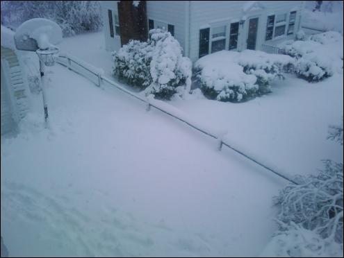 Snow Day 1/12/11